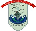 Combat Engineer Company